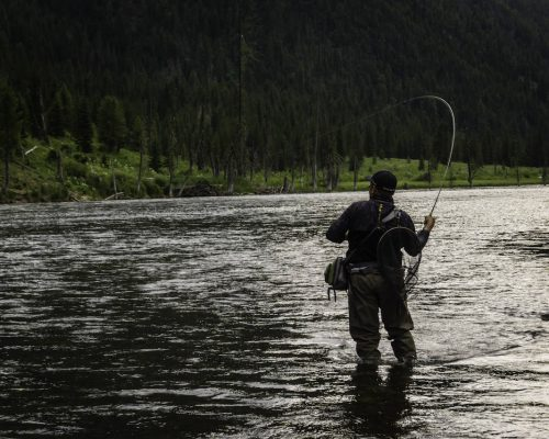 10-Tips-to-be-a-Better-Fly-Fisher-The-Fly-Fishing-Basics.jpg